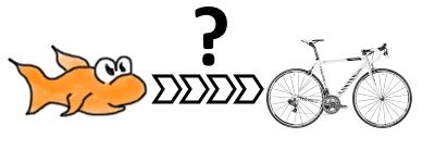 Wie kommt der Fisch zum Rennrad? (Fisch sucht Fahrrad)