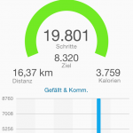 Garmin Connect App - Schritte
